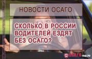 Сколько в России людей управляют автомобилем без полиса ОСАГО