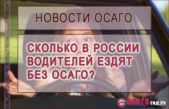 Сколько в России водителей ездят без полиса ОСАГО