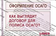 Договор страхования ОСАГО и его порядок оформления