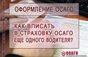 Процедура внесения дополнительного водителя в полис ОСАГО