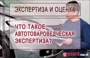 avtotovarovedcheskaya-ekspertiza